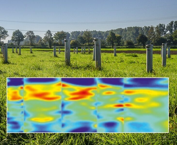 Meadow and geophysical measurement